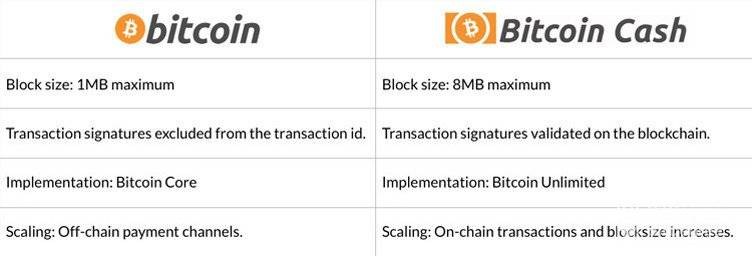 Bitcoin vs. Bitcoin Cash- CoinGyan