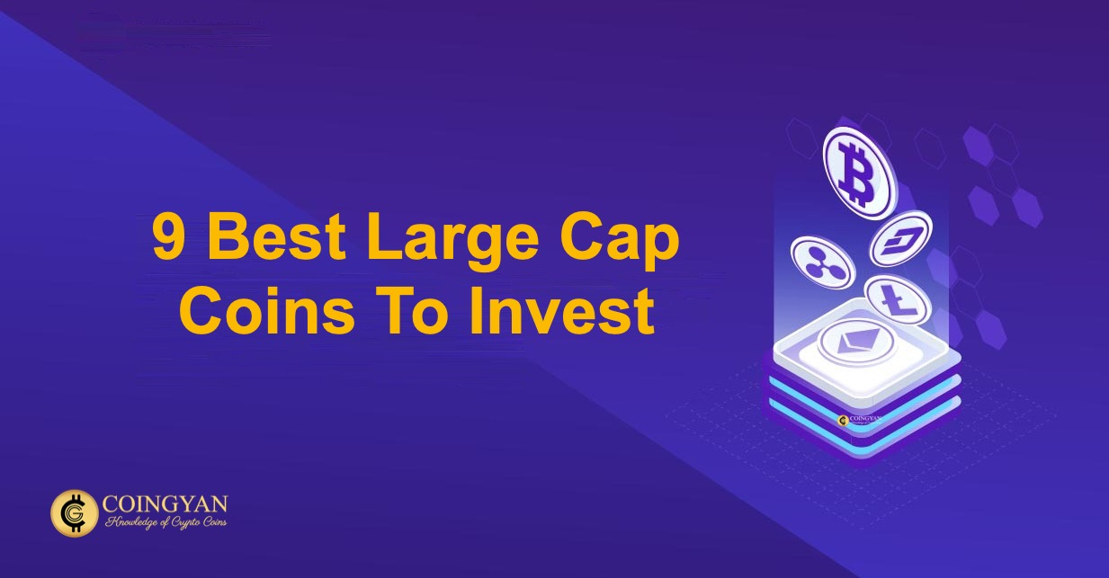 9 Best Large Cap Coins To Invest - CoinGyan