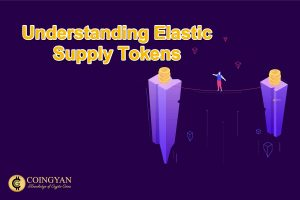 Understanding Elastic Supply Tokens