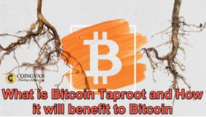 What is Bitcoin Taproot and How it will benefit to Bitcoin - CoinGyan