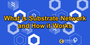 What is Substrate Network and How it Works - CoinGyan