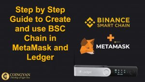 Step by Step Complete Guide to Create and use BSC Chain in MetaMask and Ledger - CoinGyam